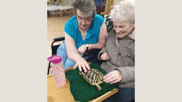 Safari Stu visits Capwell Grange care home