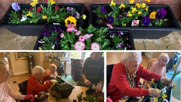 Blooming competition at Wigan care home