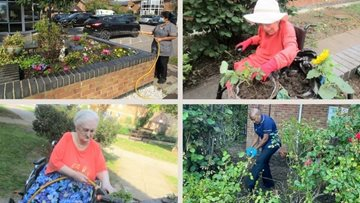 A blooming success for Seabrooke Manor in HC-One gardening competition