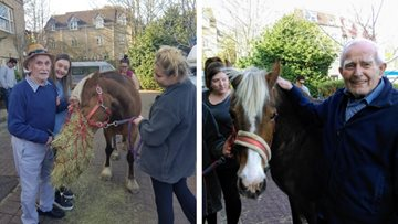 Residents enjoy Horsing around at Frome care home