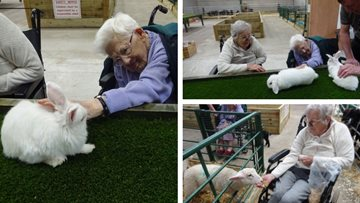 Residents make new furry friends at Wigan care home