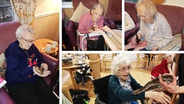 Residents take a walk on the wild side at Dukinfield care home
