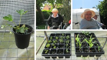 Residents embrace their green thumb with garden project