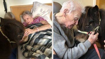 Four-legged friends at Falkirk care home