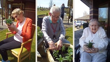 Gardening club meetings at Kirkcaldy care home
