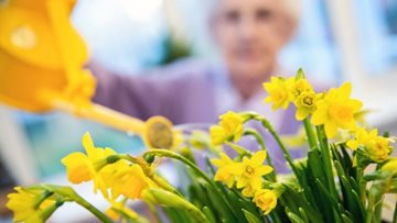 Green fingered Residents form gardening club at Stockon-on-Tees care home