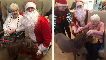 A Festive Visit from Doolittle Ponies