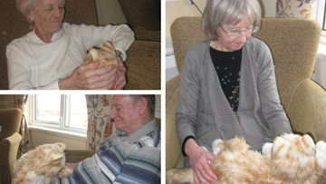 Purrfect companion at Stirling care home