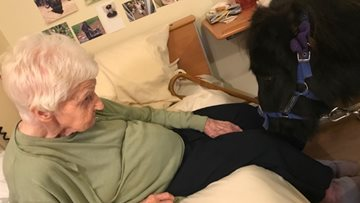 Lollipop ponies visit Coventry care home