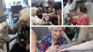 Jesmond care home welcomes Claire's Cool Creatures