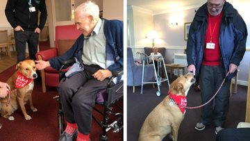 Pet therapy is a hit at Beaconsfield Court